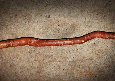 Auz Didgeridoo