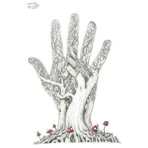 Natures Reach